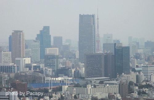 20090129shinjuku2