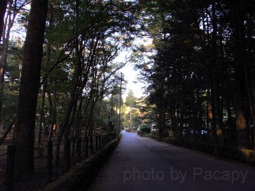 20091014karuizawa5