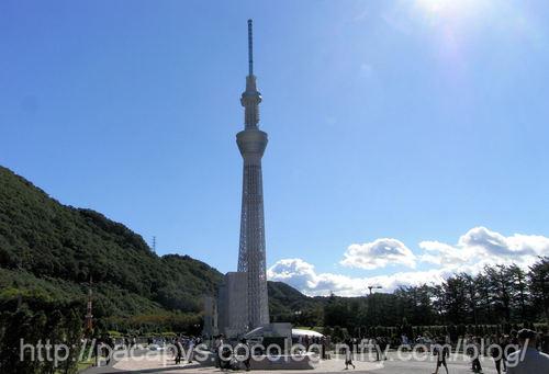 20101016kinugawa01