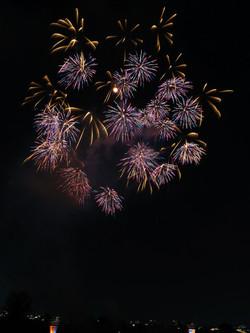 2014080227