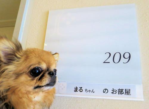 20160419171054_s120